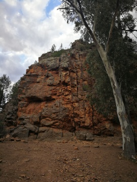 warren gorge