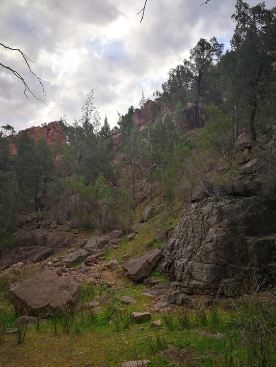 warren gorge